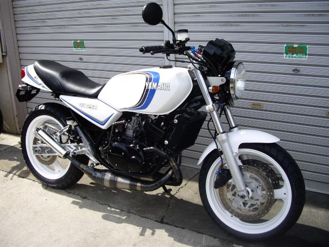 IMGP1195